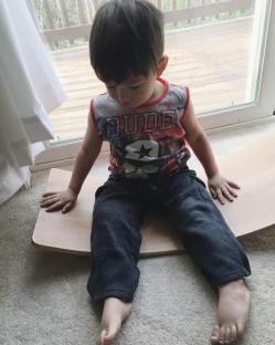 Vinny's Waldorf Balancing Board